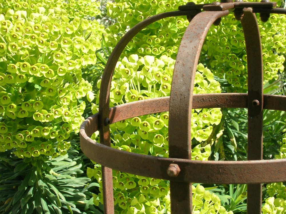 Garden Obelisks Support 4 Plants Sturdy Re Bar Steel